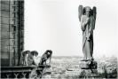 Parigi '93 :: parigi131