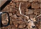 Puglia '09-'10 :: puglia_21