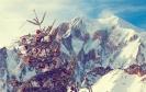 Monte Bianco :: img_7816