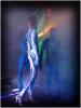 light@Avatar :: light@avatar (3)