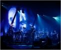 Peter Gabriel live - torino '14 :: peter_gabriel (7)